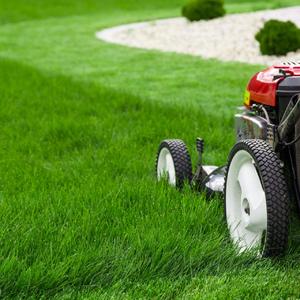 Осенний уход за газоном Подготовка газона к зиме
